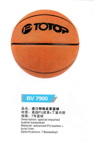 v国际特殊国际皮革(17)沈阳体育用品|沈阳新加坡篮球武术节报名图片