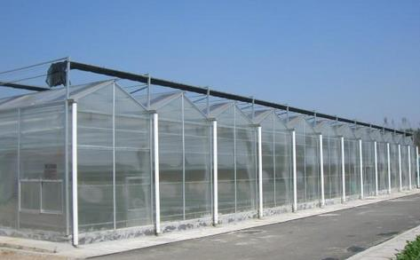 阳光板温室 山西蔬菜大棚配件 太原温室大棚设计 山西